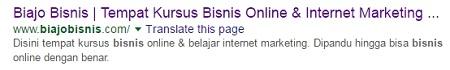 tampilan-biajobisnis-di-google